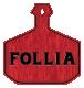 Follia NYC Restaurant